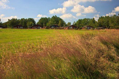 lodge fields view